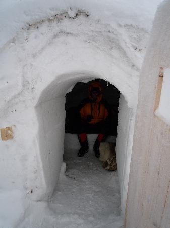 inside-the-igloo.jpg